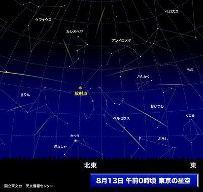 ペルセウス流星群2008