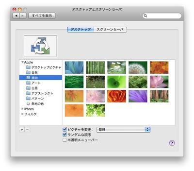 20091009_screen